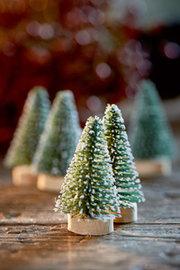 Merry Little Christmas Tree 5pcs