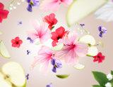Hibiscus Love Lampe Berger