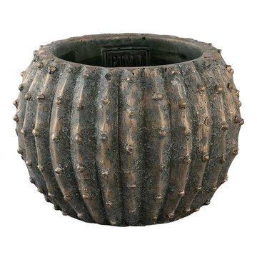PTMD Cas green Cement pot cactus round m