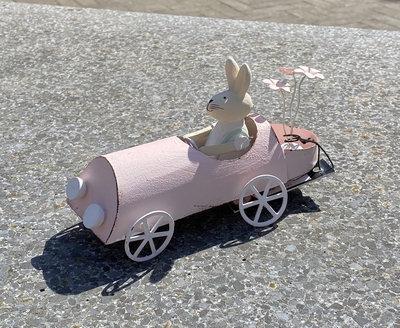 Konijn In Auto