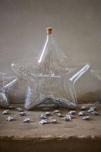 Riviera Maison Big Star Decoration Bottle silver L