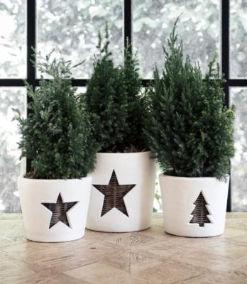 Rivièra Maison Winter Star Pot M