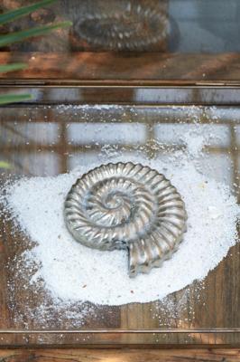 Rivièra Maison Nautilus Decoration Shell