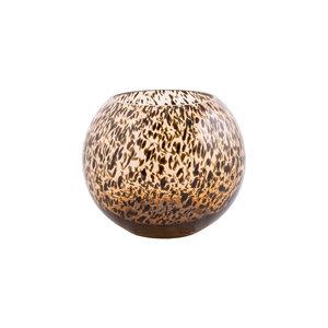 zambezi cheetah Cheetah brown