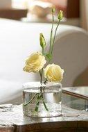 Gorgeous flower mono vase